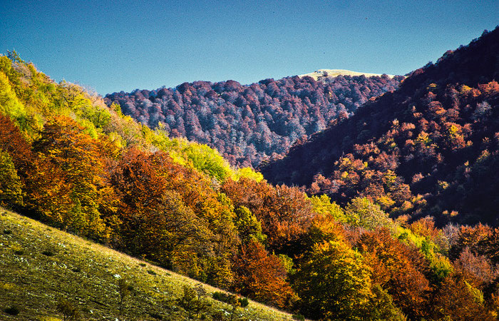 Villavallelonga, paesaggio