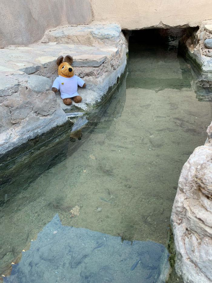 Sehr gut konnte ich aber meinen Greyhounds die heute noch funktionierende Wasserversorgung der ehemaligen Festung zeigen