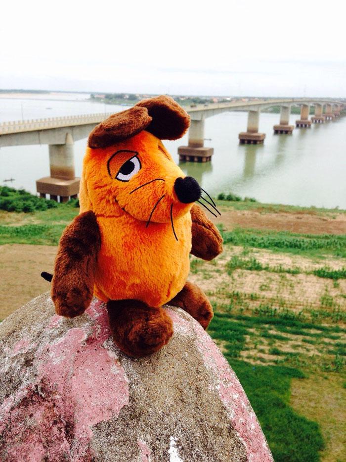 Maus auf dem Leuchtturm mit Blick auf den Mekong.