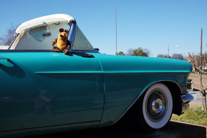 Maus in Elvis' Cadillac
