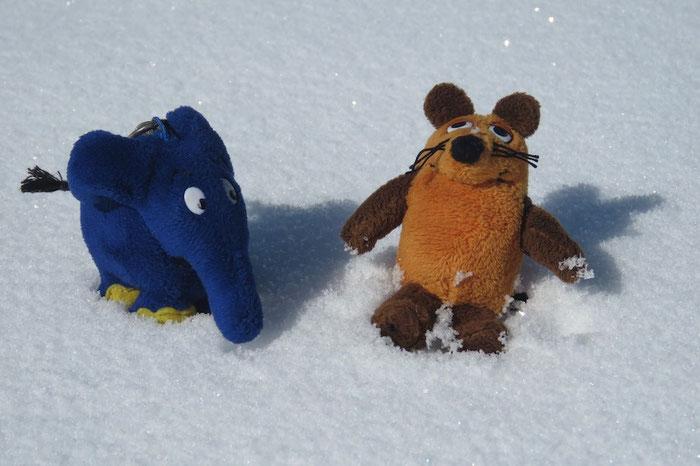 Während wir uns beim Lunch stärken, tollen die Beiden im Schnee herum.