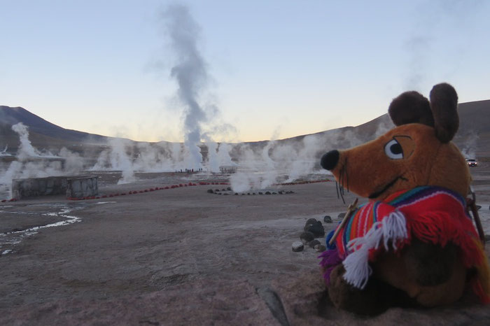 Maus beobachtet noch vor dem Sonnenaufgang die Geysire von El Tatio