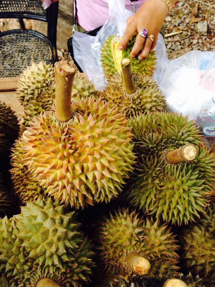 Der absolute Tiefpunkt des Tages: Wir probieren eine Durian-Frucht