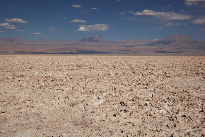 In der Salar de Atacama