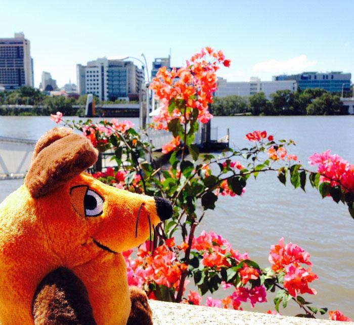 Maus wartet auf den gratis verkehrenden City-Hopper, um die Stadt vom Wasser aus sehen zu können.