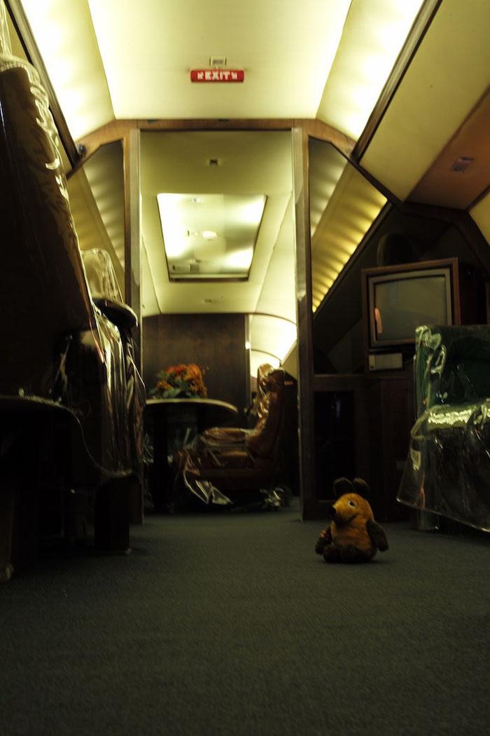 Maus im Flugzeug von Elvis - die Turbinenvibrationen haben sie ganz schön durchgeschüttelt !