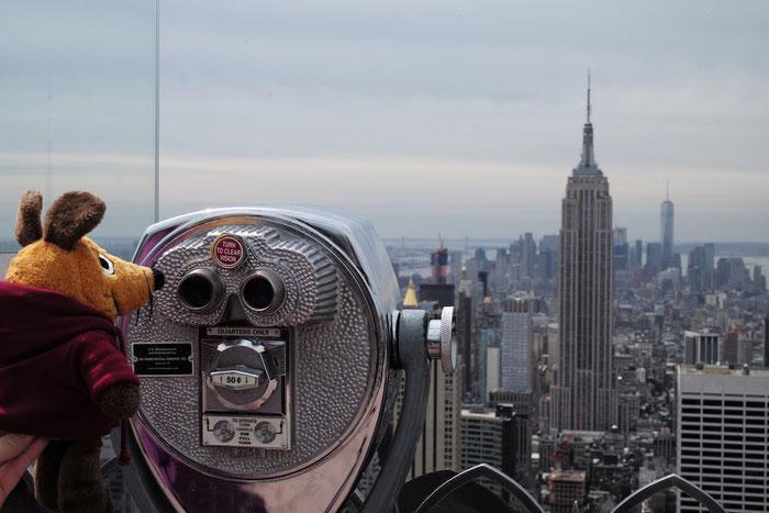Maus besichtigt das Empire State Building.