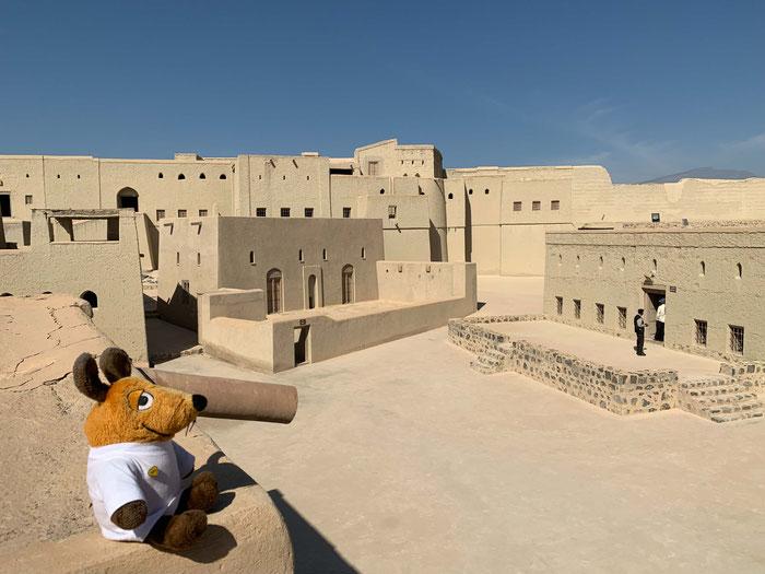 Die Festung von Bahla wirkt kahl und farblos. Da kommt mein Fell gleich viel besser zur Geltung !