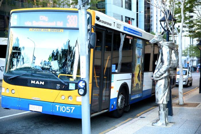 Ob dieser Fahrgast vom Busfahrer mitgenommen wurde ? Wir wissen es nicht.
