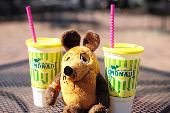 Maus stärkt sich nach dem Rundgang an unserer Limonade