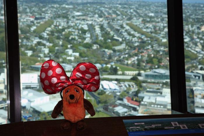 ....mich als Minnie-Maus zu verkleiden, das ist doch ein ganz schöner Angriff auf meine Maus-Persönlichkeitsrechte. Am liebsten hätte ich meinen beiden Greyhounds .....