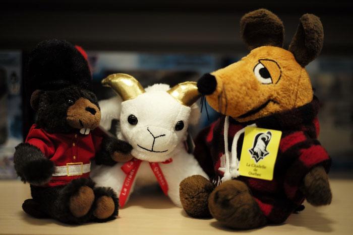 Während unserer Führung vergnügt sich Maus im Shop der Zitadelle mit ein paar neuen Freunden - unter anderem dem Maskottchen des Regiments, einem Ziegenbock.