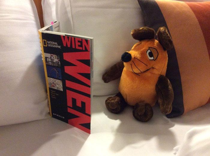 Die Maus studiert die Sehenswürdigkeiten von Wien