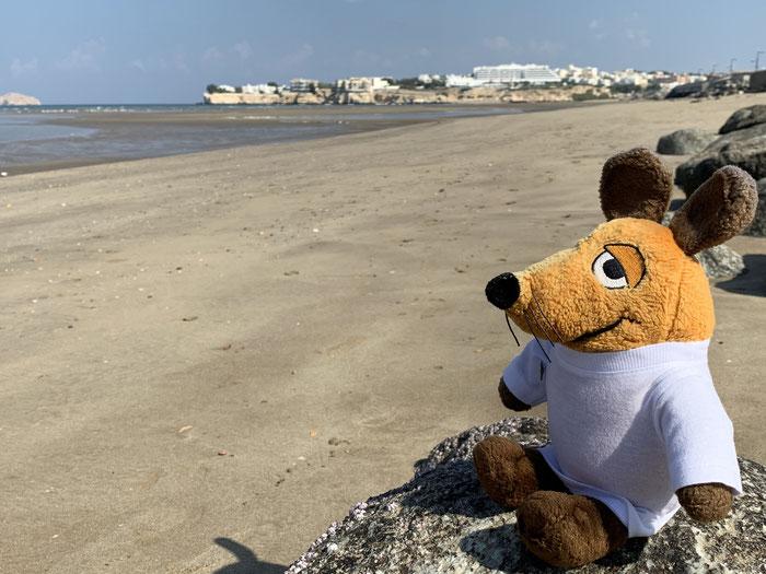 Unterwegs nutzte ich die Gelegenheit, mich am Strand zu sonnen. Insider wissen, dass die Greyhoundin überall Sand sammelt :-)