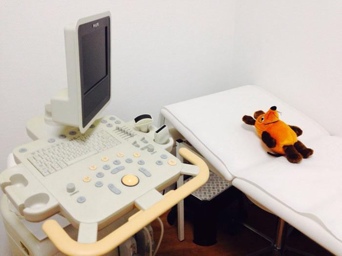 Die Maus bei der Ultraschalluntersuchung