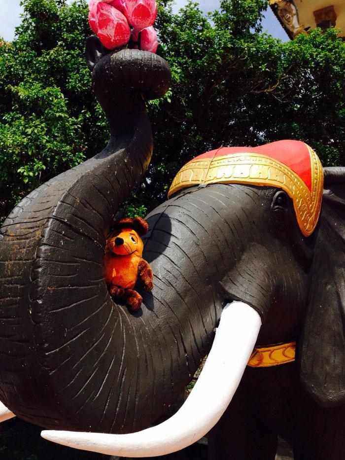 Maus und ihre Elefanten :-)