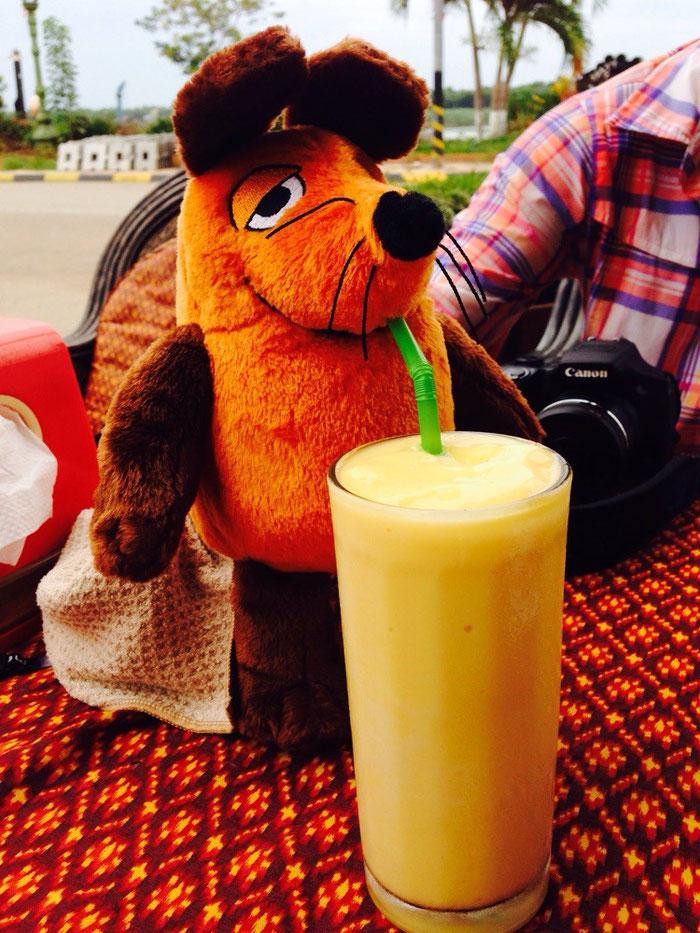 Nach einem solchen Tag wollte auch die Maus einen Mango-Shake.