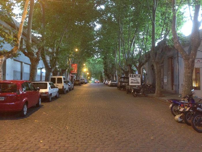 Ein Straßenzug von Colonia im Abendlicht
