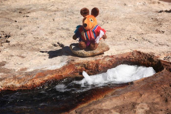 Maus neben kochend heißem Wasser