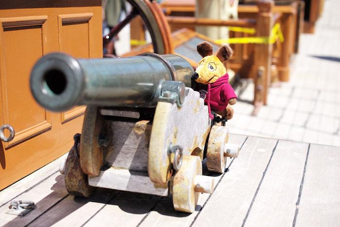 Maus mit einer auf ihre Größe abgestimmten Kanone.