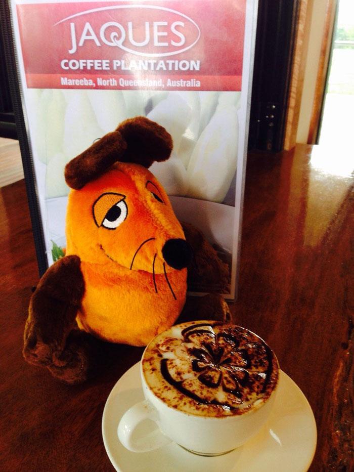 Die Maus startet in den (hoffentlich) regenfreien Tag mit einer Tasse Kaffee bei der JAQUES Coffee Plantage.