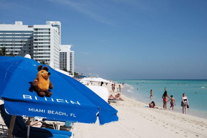 Maus sonnt sich am Strand von Miami Beach
