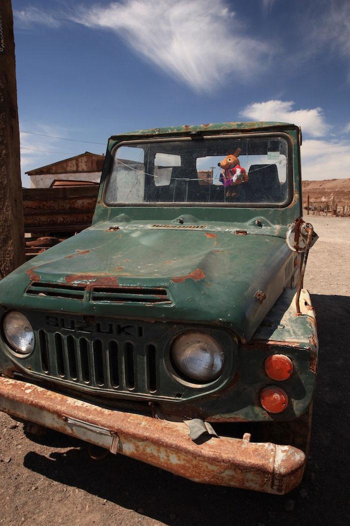 Maus, Du sitzt im falschen Auto !! Wir haben zwar einen Suzuki als Leihwagen gemietet - aber es ist nicht dieser !!