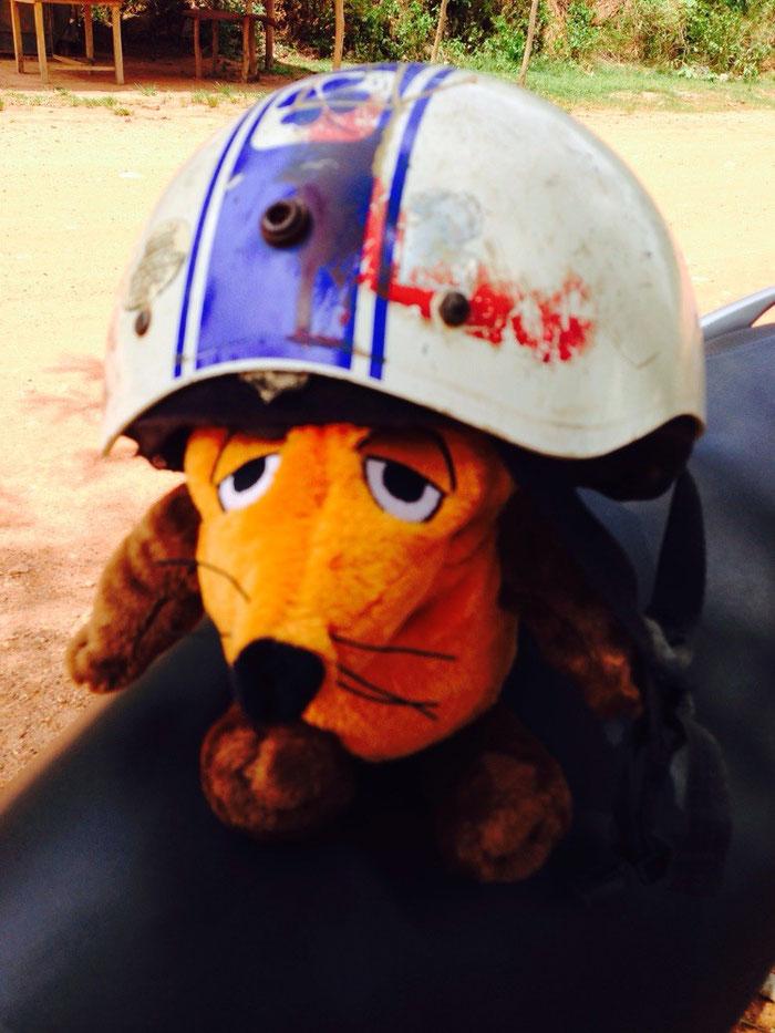 Maus war zwar nicht ganz glücklich über den Helm, aber wer mitkommen will, trägt Helm !