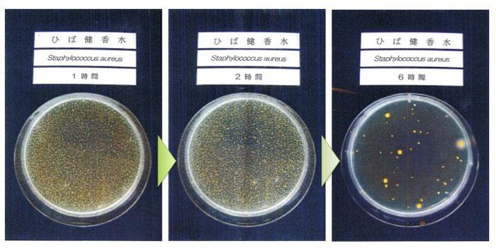 黄色ブドウ球菌に対する殺菌効力試験結果
