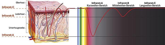 Infrarotstrahlung Eindringtiefe in die Haut Schaubild Diagramm Infrarot-ABC