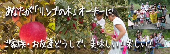 あなたが「リンゴの木」のオーナーに! アケチりんごパークメインバナー