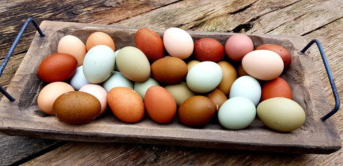 Naturbunte Eier
