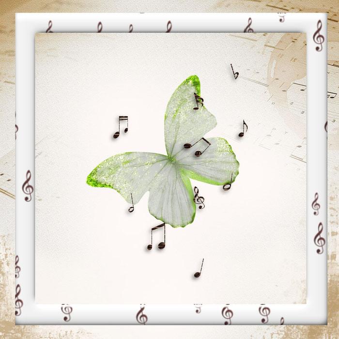 Schmetterling mit Noten