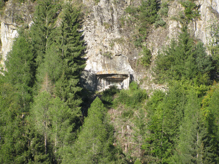 SWISS ARMY BUNKER