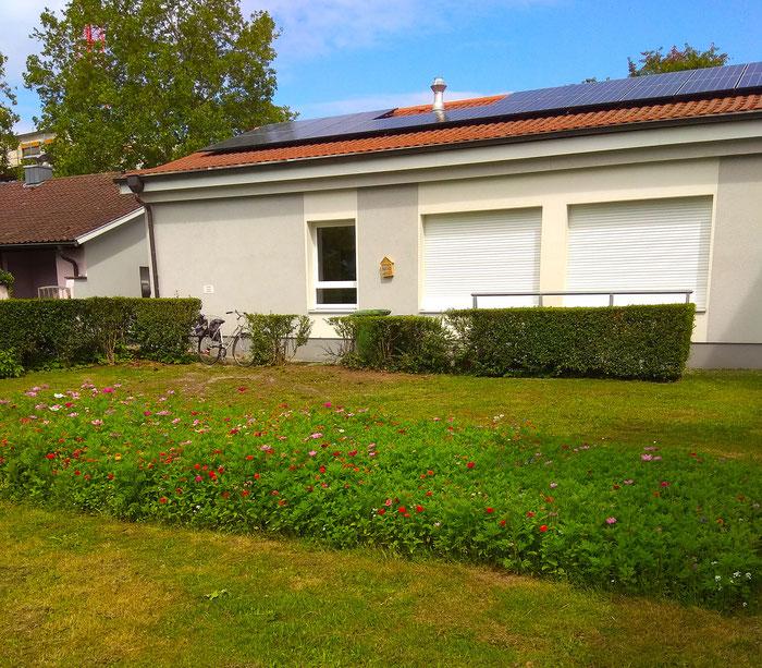 Die Blumenwiese, im Hintergrund das Karl-Still-Haus mit dem Insektenhotel zwischen den Fenstern und der Photovoltaik-Anlage auf dem Dach.