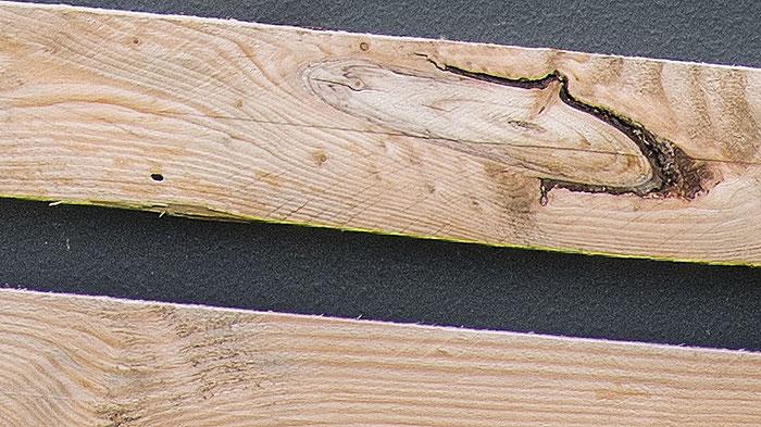 100% Crop, Testbild NIKON Z7 mit LEICA Elmarit M 90 mm 1: 2,8, Foto: bonnescape.de