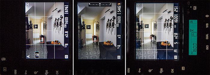 Praxistest NIKON D500: Vergleich der Monitorbilder D500, D750, D4, Foto: bonnescape