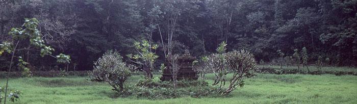 Pura Batukaru. Der Schrein ligt inmitten eines überwucherten Weihers. Nikon F4. Foto: bonnescape 1993