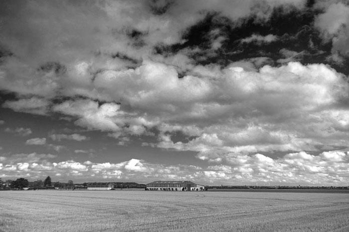 Schwarzweiss-Landschaftsfoto Scheune auf freiem Feld, Erftkreis, 2020. Aufnahme mit Nikon Z7 und 3,5/30 mm Lydith Meyer-Optik Görlitz. Foto: Dr. Klaus Schörner