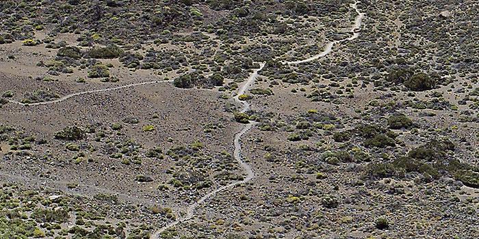 Las Canadas del Teide, Teneriffa. Ausschnitt in 100%-Ansicht aus dem fertigen Panorama-Foto. Leica M9 mit 2,8/21 mm Biogon. Foto: Klaus Schoerner