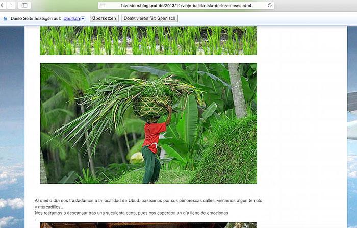 Screenshot: Unerlaubte Bildverwendung in einem Reiseblog.