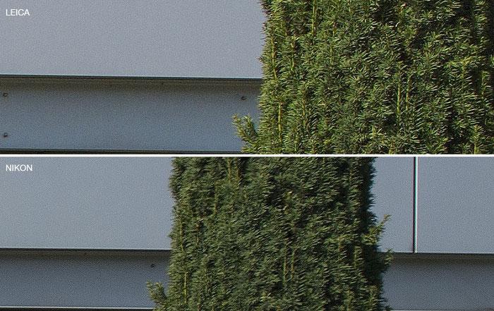 Bildausschnitt vom äusserst rechten Rand in 100% Ansicht, geschärft: oben Leica M9 mit PC-Super-Angulon-R 2,8/28 mm, unten NIKON D4 mit dem PC-E Nikkor 24 mm 1:3,5D ED. Foto: Klaus Schoerner