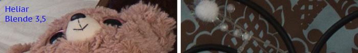 Praxistest Voigtländer Heliar 3,5/50 mm VM, Testmotiv Interieur, 100%-Crop bei Blende 3,5, Foto: bonnescape