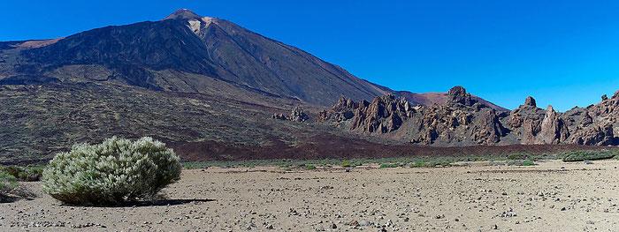 Teide-Nationalpark, Llano de Ucanca, die Ebene von Ucanca mit einem Exemplar des hier typischen Kugelginsters. Landschaftsfoto mit Leica M9 und 35 mm Zeiss Biogon. Foto: Klaus Schoerner