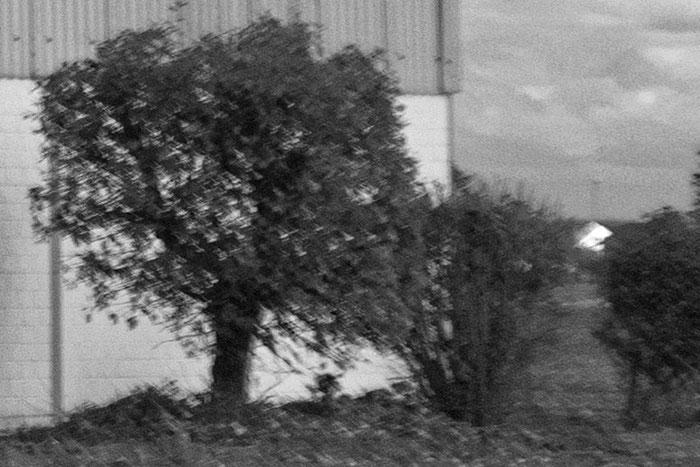 Erfahrungen mit dem 3.5/30 mm Lydith. 100% Crop am Bildrand. Foto: bonnescape