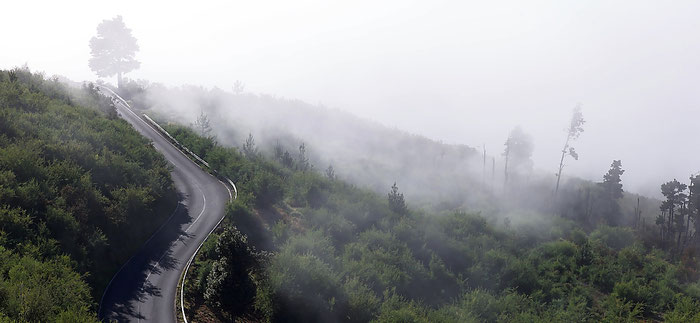 Strasse durch den Corona Forestal zum Teide-Nationalpark. Landschaftsfoto mit Leica M9 und 50 mm Summicron. Foto: Klaus Schoerner