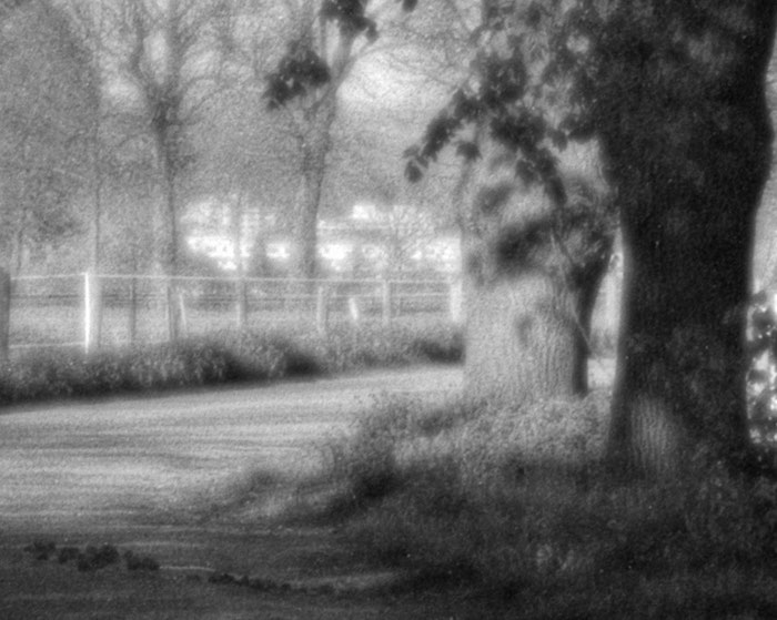 Ausschnitt Hintergrund-Bokeh bei Offenblende: Landschaftsaufnahme mit dem 95 Jahre alten Laack Polyxentar 6.8/135 mm, Foto: bonnescape.de