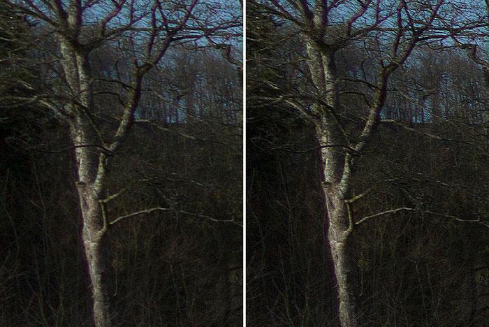 Detailausschnitt aus dem Test-Panorama, Ecke links, Leica M9 mit PC-Super-Angulon-R 2,8/28mm, Foto: Klaus Schoerner