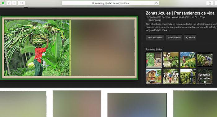 Screenshot: Unerlaubte Bildverwendung in einer Abhandlung über die blaue Zone.
