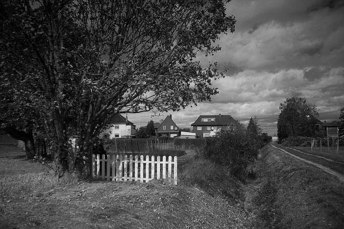 Schwarzweiß-Foto Hintergärten im Erftkreis, 2020. Nikon Z7 mit 3,5/30 mm Lydith von Meyer-Optik Görlitz. Foto: Dr. Klaus Schörner